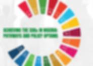 ACHIEVING THE SDGs IN NIGERIA_ PATHWAYS