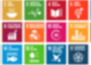 SDG icons_Artboard 2.png