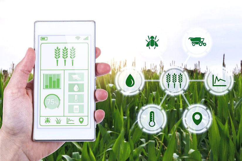 Concept%252520for%252520agritech%252520industry%252520showing%252520farmer%252520with%252520smartpho