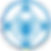 Secure Staff Logo.png