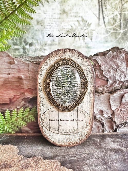 Woods and Wonder - Brezza nel bosco