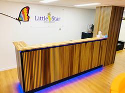 Little Star Speech Therapy