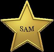 SAM.png