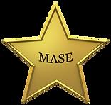 MASE.png