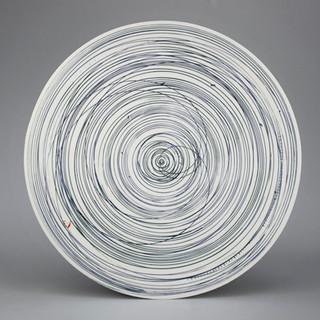 Platter. Blue lines