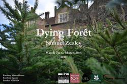 Samuel Zealey - 'Dying Foret'