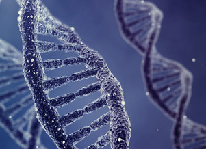 New DNA Structure Has Been Discovered By Australian Researchers - it may have an important role in a