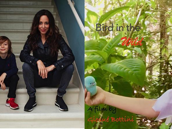 Giosué Bottini And Bird in the Wild
