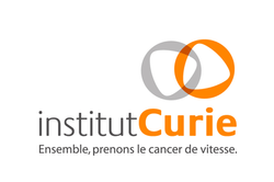 Institut-Curie.png