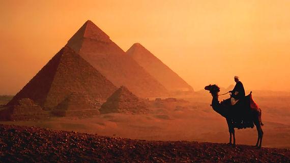 Camel-Standing-Near-Egyptian-Pyramids-Du