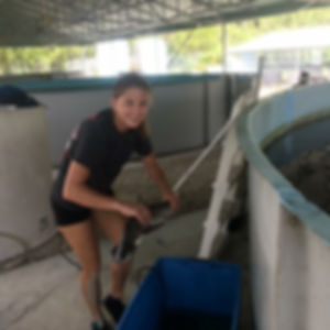 Sarah Sisco Shark Research.jpg