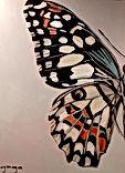 BigButterfly.jpg