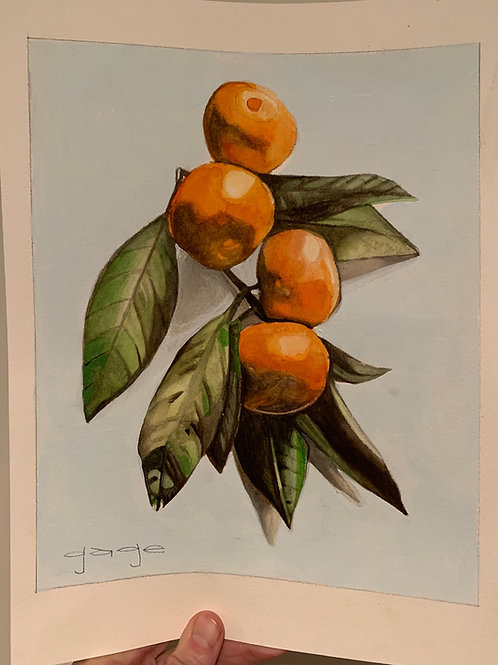 Oranges on Paper