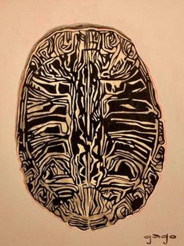 Turtle Shell II
