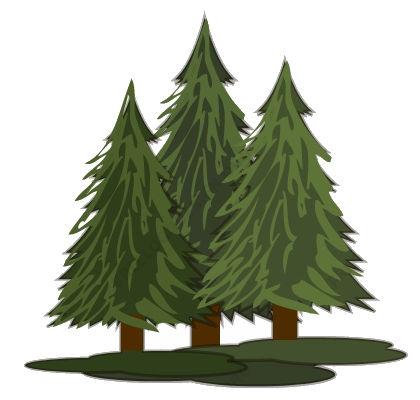 Triple trees 3.jpg