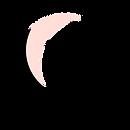Belliaroze-Logo-Large2.png