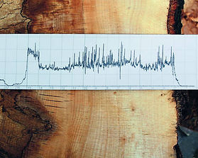 ILM wood sample.jpg