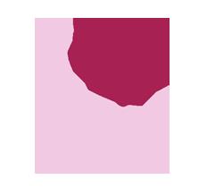 ilb rosa solutions copy