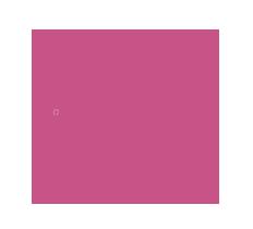 hotel rosa solutions copy