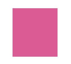 rent a car rosa solutions copy