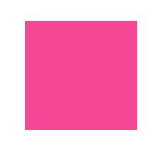 travel rosa solutions copy