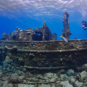 Curaçao é eleito o melhor destino para mergulho