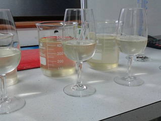 the Art & Science of Winemaking〜