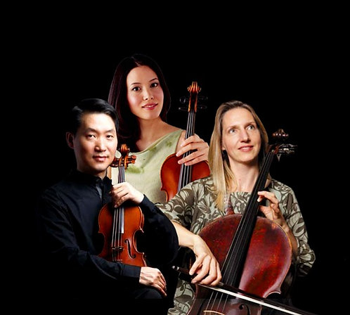 From Vienna to Budapest! The Elmwood Trio