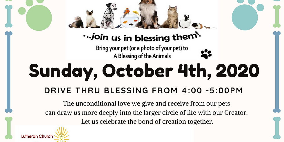 BLESSING OF THE ANIMALS!