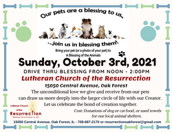 2021 Blessing of the Animals