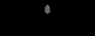 Sonder logo_SackersGothic.png