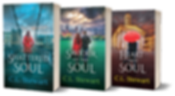 Book Cover - Soul Series.png