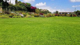 Enkishon-Gardens-Wedding-Venue-Landscape-3