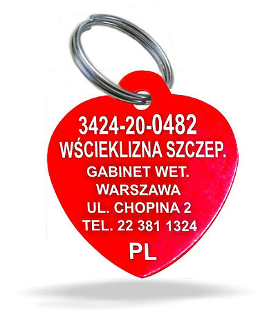serce-2020-PL-rovno-opt.jpg