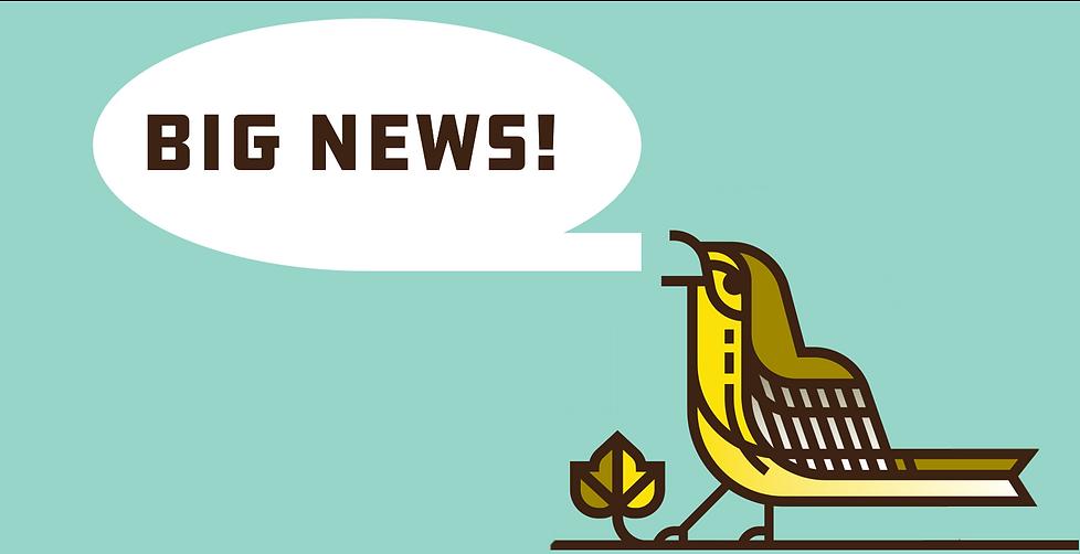 Big News Bird.png