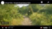 Absorb Screen SHot.png