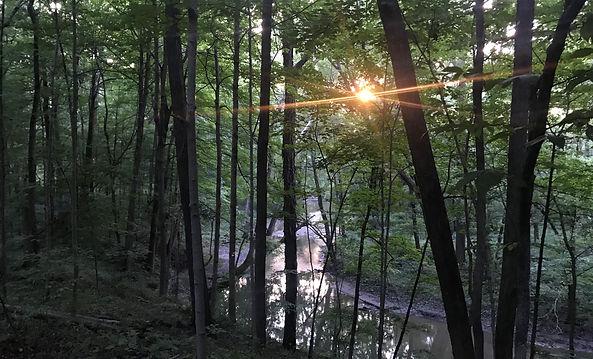 mud creek.jpg