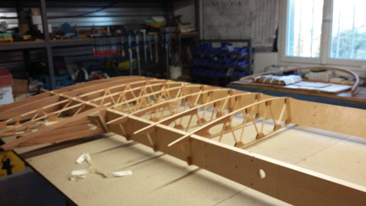 wing in progress