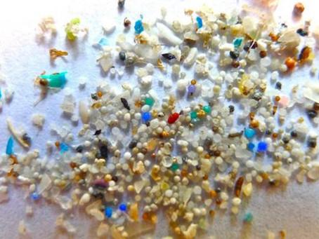 Pacífico mexicano, un mar lleno de microplásticos