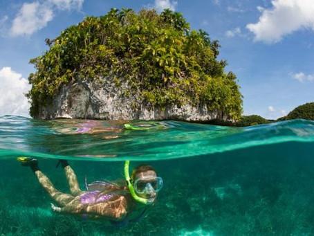 Palaos, el santuario marino donde se  prohibe la mayoría de las cremas solares