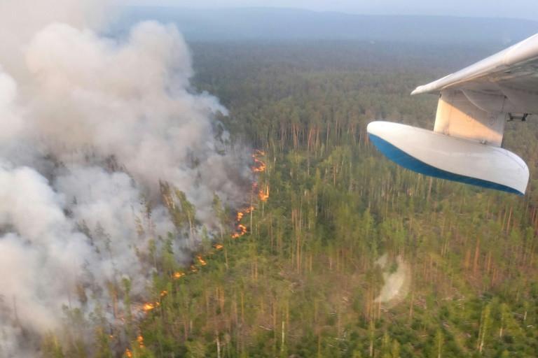 Ministerio Forestal de Krasnoyarsk Krai/AFP / HO