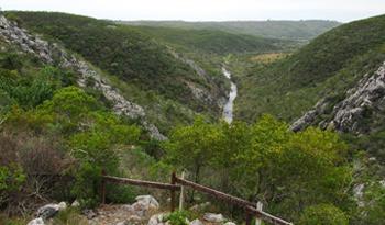 Uruguay reafirma compromiso con el cuidado del medio ambiente