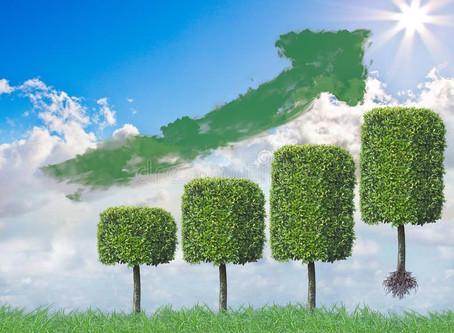 Aumentó el índice de reciclado de plásticos en Argentina, factor fundamental en la economía circular
