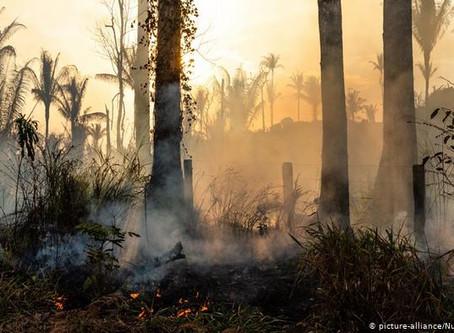 Incendio forestal deja ocho muertos en Perú