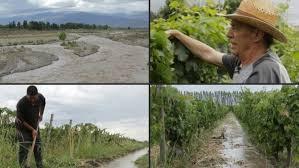 Productores del Valle de Uco, tierra del vino argentino, defienden el agua contra la minería