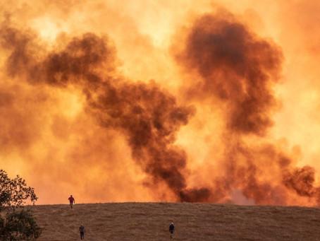 Los incendios forestales obligan a más de 3.100 personas a evacuar en la Ciudad de Andalucía España