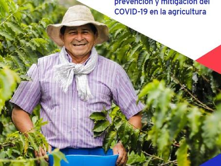OIT lanza guía para prevenir COVID-19 en el sector agrícola