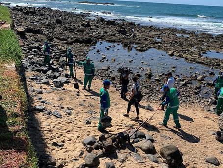 Estudiantes brasileños transforman petróleo recolectado en playas en carbón