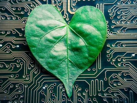 Los bonos verdes cumplen 10 años: modelo para fomentar la sostenibilidad en los mercados de capital