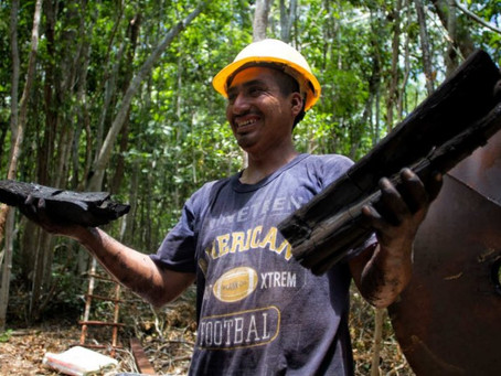 Ante la Crisis Generada por el Covid 19, Productores Rurales Buscan Nuevos Mercados Para Miel y Carb